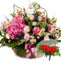 카네이션수국꽃바구니(코사지무료)
