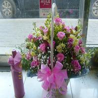핑크의 온정